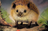 【蜗牛娱乐】恐怖漫画推荐《吃刺猬的人》 为治怪病吃吃刺猬险丧命