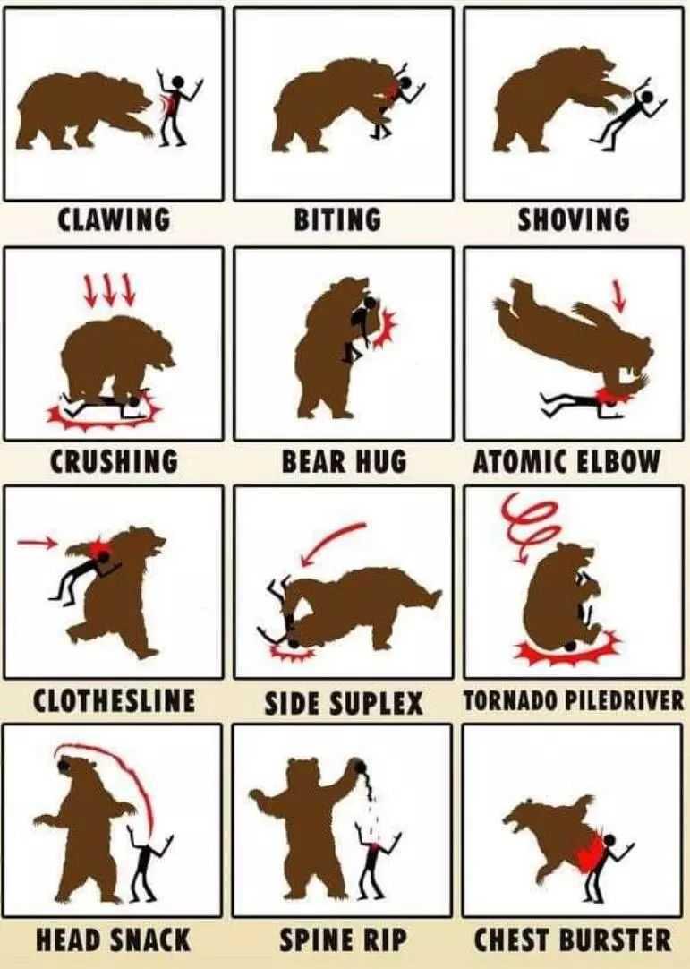 【蜗牛娱乐】搞笑漫画图片单挑熊反被杀 单挑熊N种死法不作死就不会死
